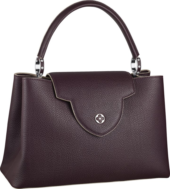 Louis-Vuitton-Capucines-Bag-2