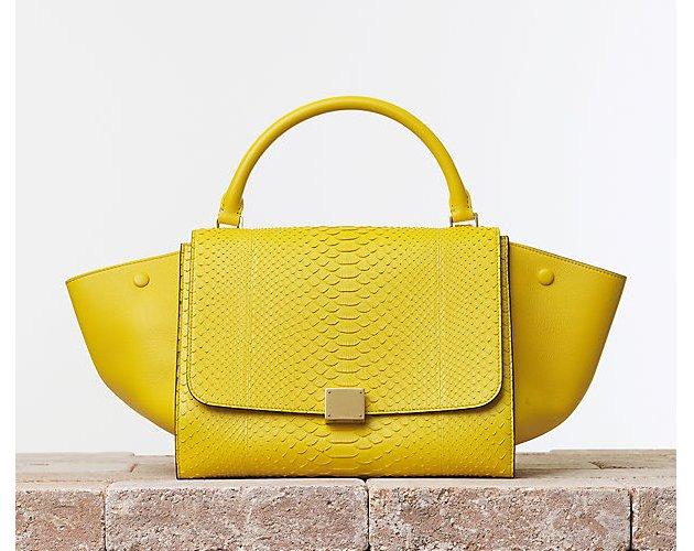 Celine-Trapeze-Handbag-Python-&-Calfskin-Mimosa