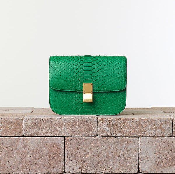 Celine Box Bag Summer 2014 | Bragmybag