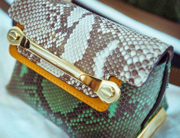 Chloe Mini Clare Bag Close-Up | Bragmybag