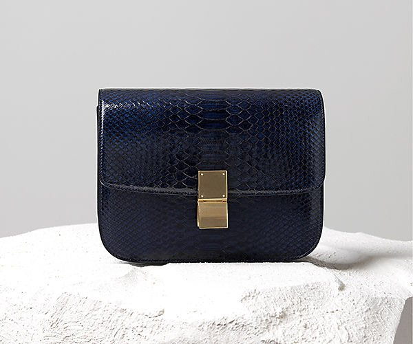 Celine Fall 2014 Bag Collection | Bragmybag