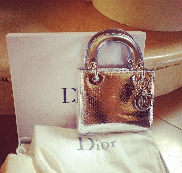 lady dior mini python silver bag bragmybag. Black Bedroom Furniture Sets. Home Design Ideas
