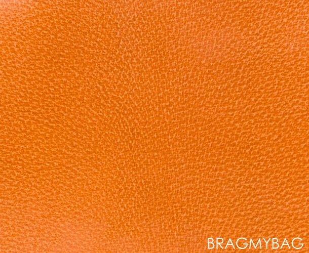Hermes-PEAU-PORC-Leather