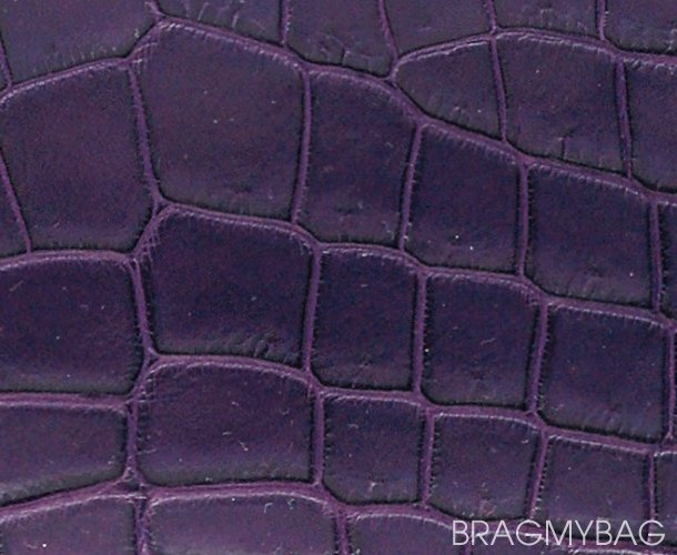 hermes-crocodylus-niloticus-matte-leather