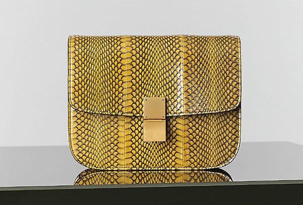 Celine-Yellow-Cobra-Box