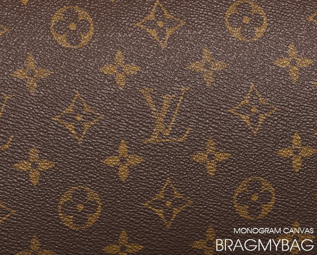 Louis Vuitton Leather Guide Bragmybag