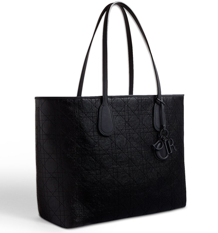 Dior-Panarea-Bag