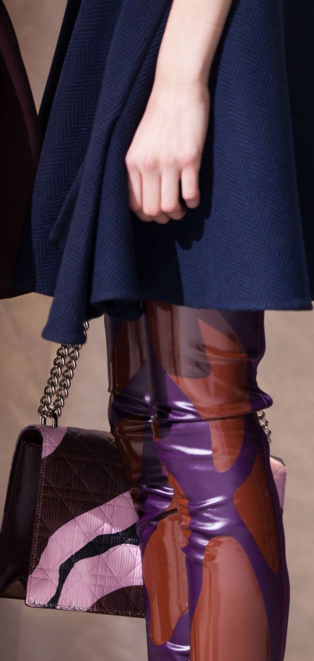 Dior-Fall-Winter-2015-Bag-Preview-6