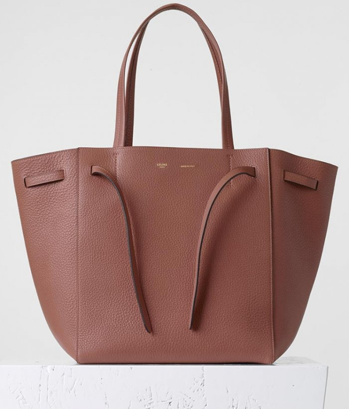 how much is a celine micro bag
