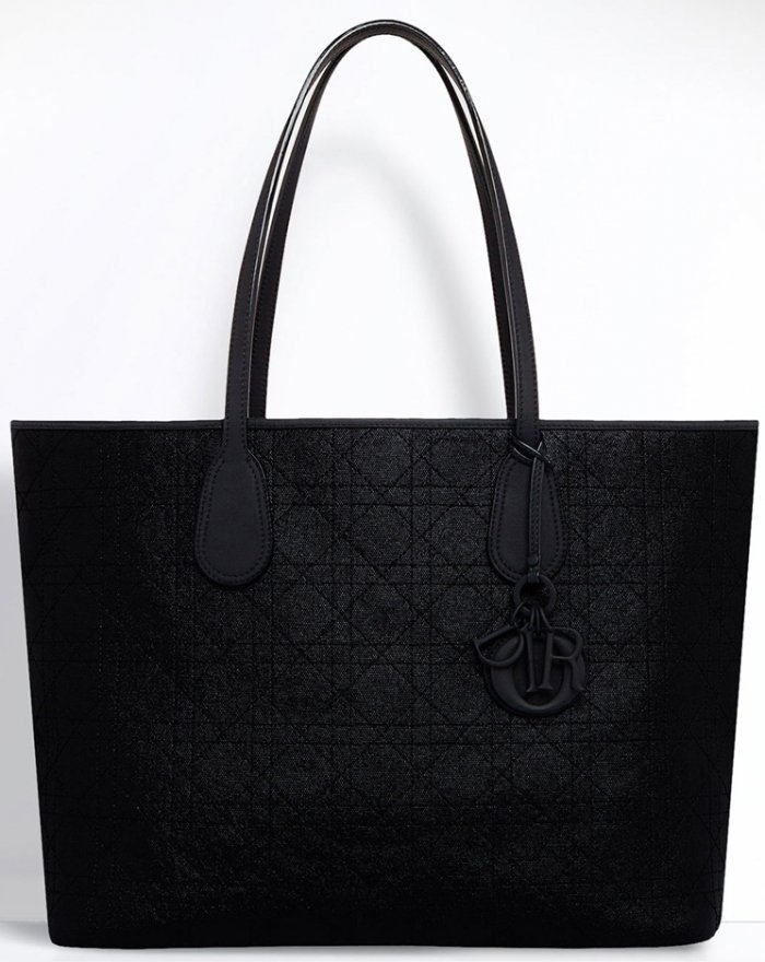 Dior-Small-Panarea-Tote-Bag-4