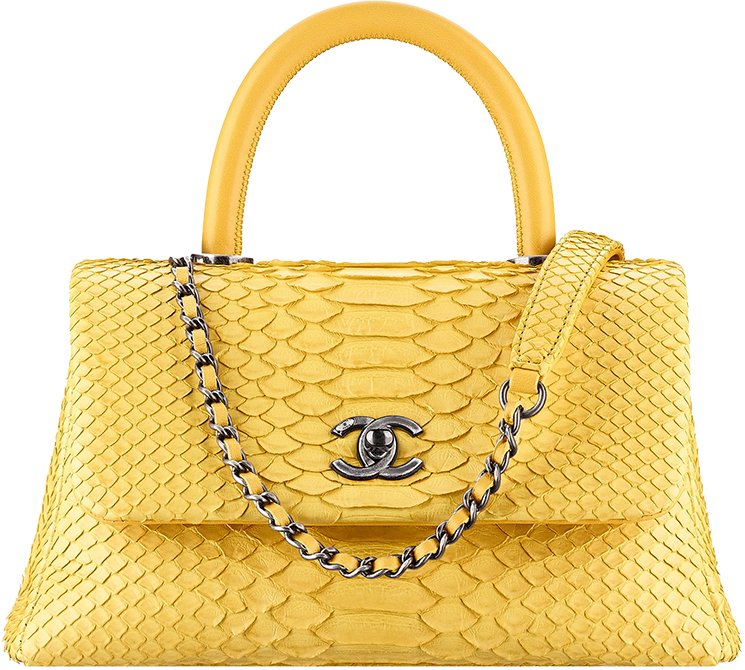 Chanel-Spring-Summer-2016-Bag-Collection-14
