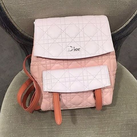 Dior-Cannage-Stiched-Flower-Backpack-Bicolor