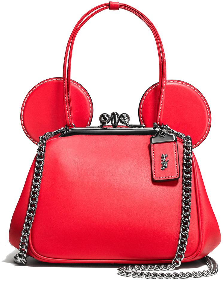 Coach-Disney-Bag-1