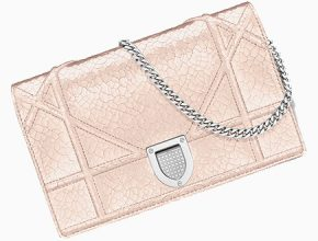 chanel-chevron-o-case-nl