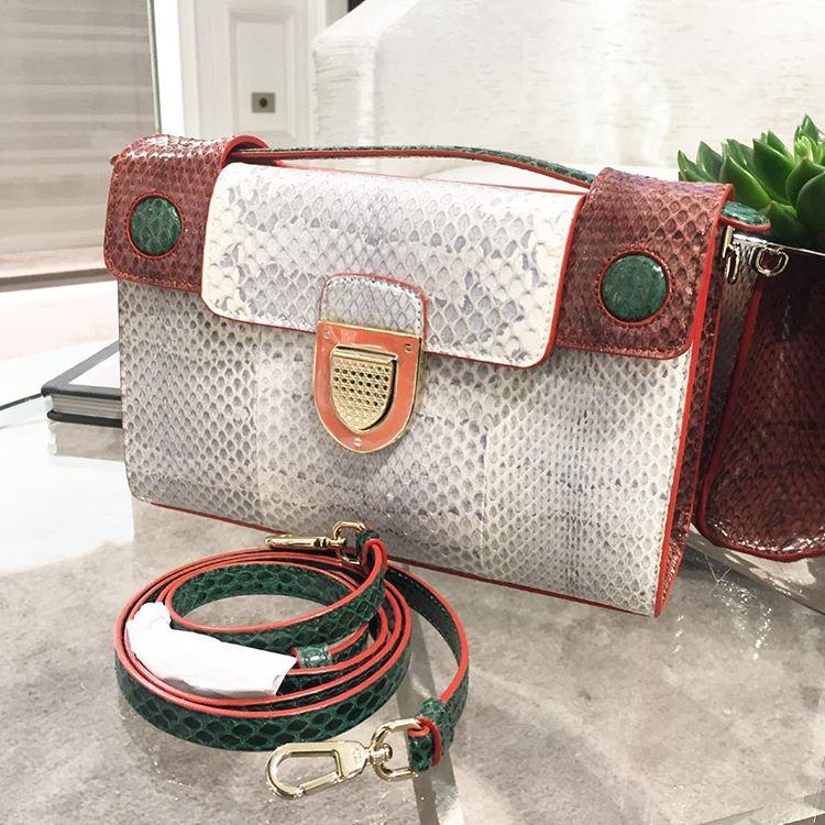 Diorever-Handle-Bag-Python