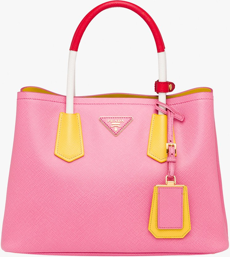 Prada-Multicolor-Double-Bag