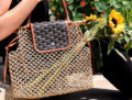 Goyard Aligre Bag