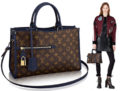 Louis Vuitton Popincourt Bag