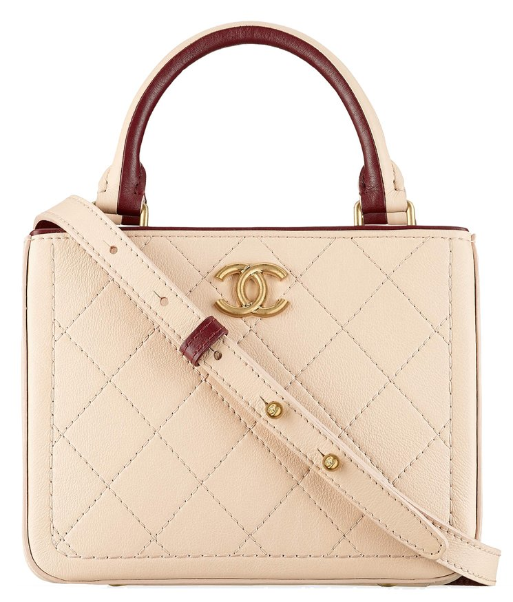 Chanel-Bi-color-Small-Quilted-Shopping-Bag-in-Bullskin-25