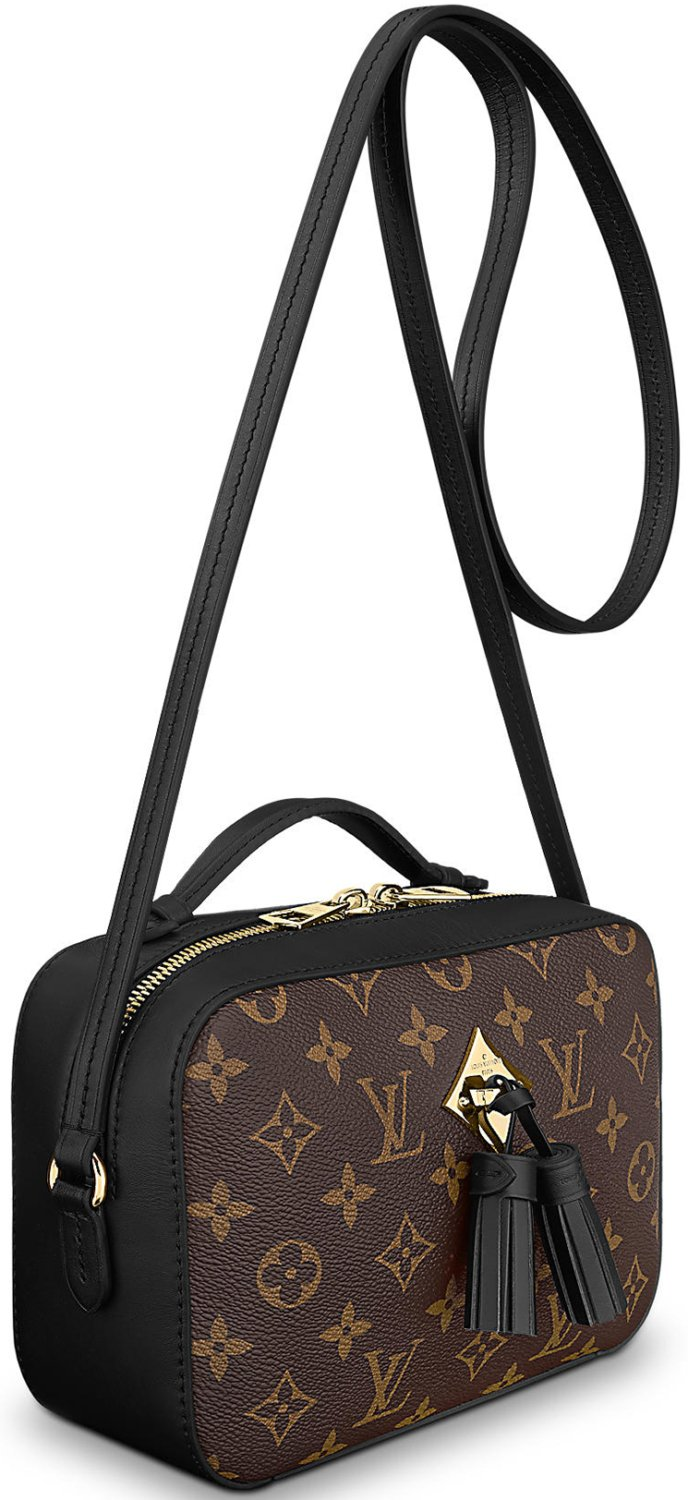 Louis-Vuitton-Saintonge-Bag-2