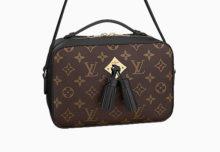 7b5d1fe3e1968 Louis Vuitton Saintonge Bag
