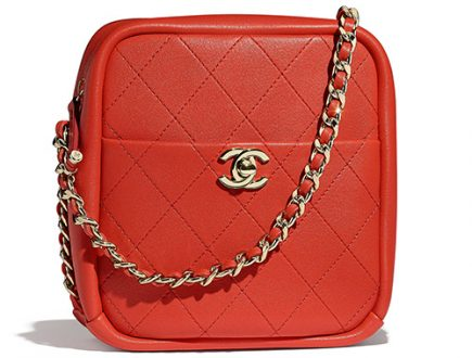 Chanel Casual Trip North South Camera Case thumb