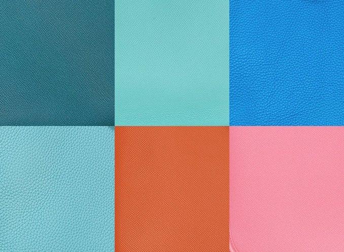 Hermes Evelyne Bag Colors