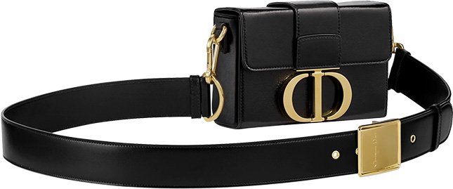 Dior Montaigne Waist Bag