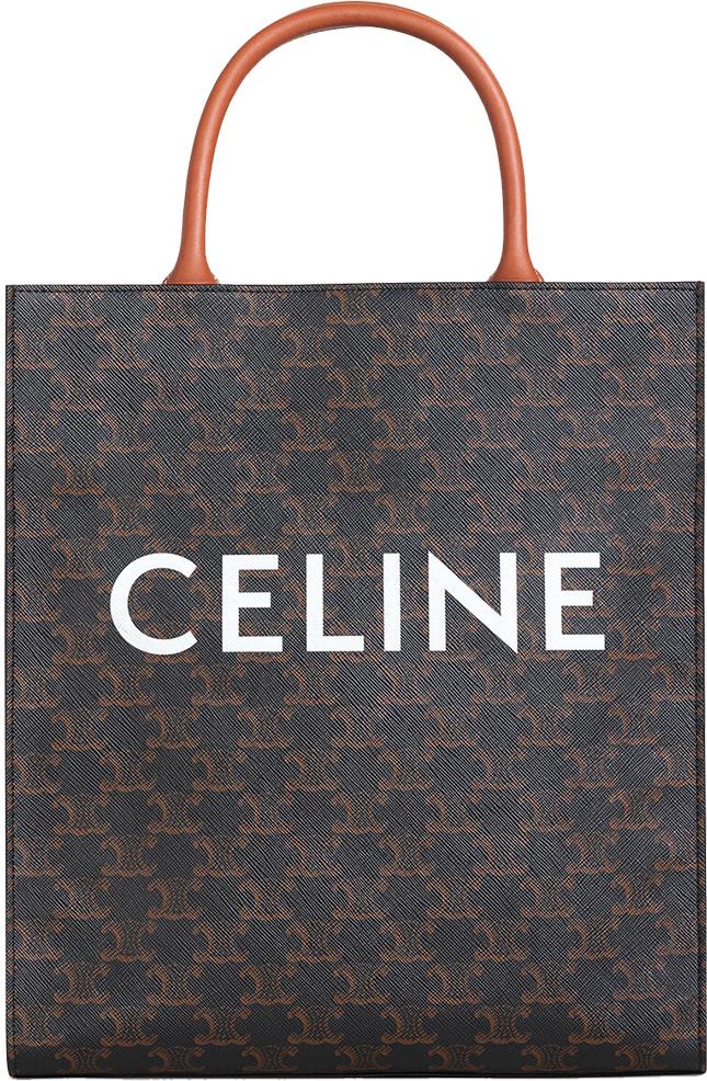 Celine Triomphe Canvas Bag Collection