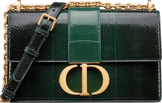Dior Montaigne Bag with Chain