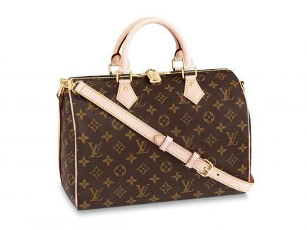 lv speedy bandouliere bag prices