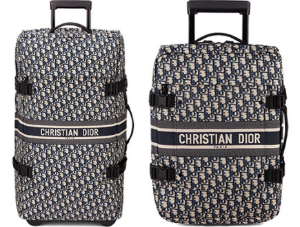 Travel Dior Bag And Trolley Case thumb