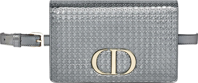 Dior Montaigne In Pouch