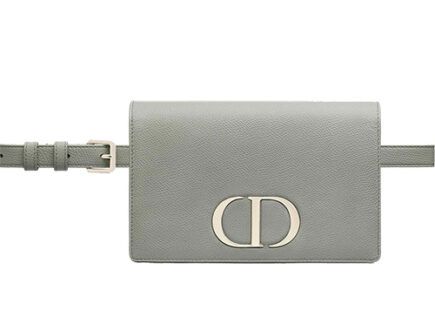 Dior Montaigne In Pouch thumb