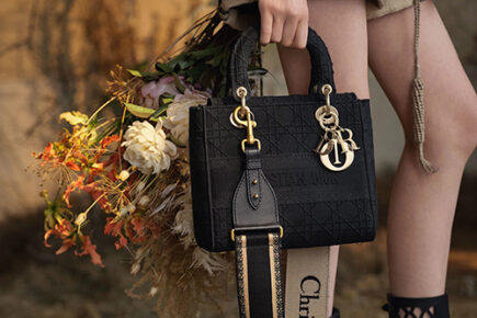 Lady Dior Embroidered Cannage Bag thumb