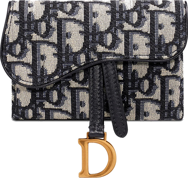 Dior Saddle WOC Waist Bag
