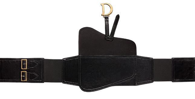 Dior Saddle Belt Bag Style