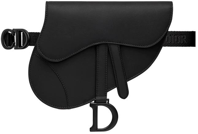Dior Saddle Flat Belt Pouch