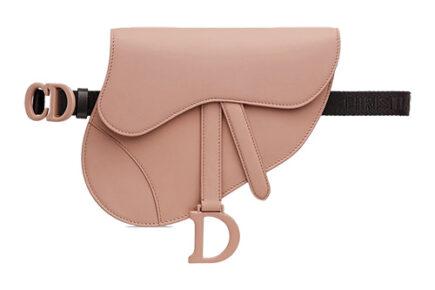 Dior Saddle Flat Belt Pouch thumb