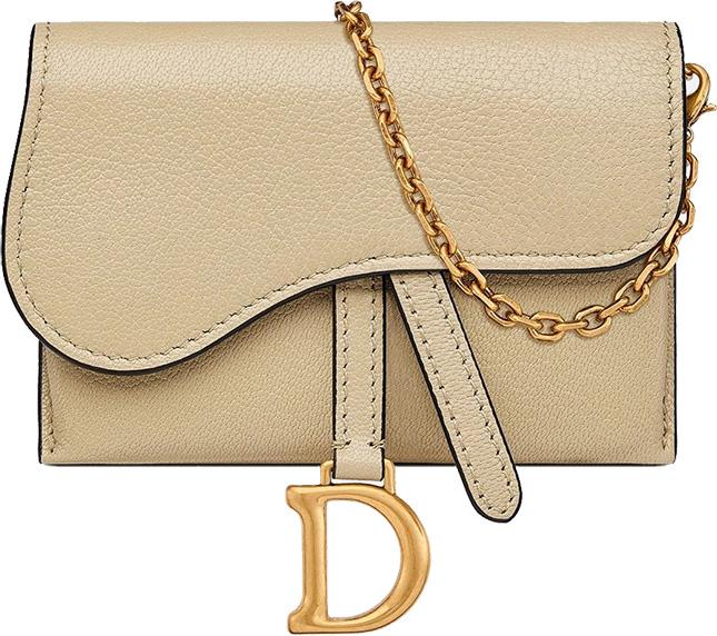 dior nano saddle pouch with chain