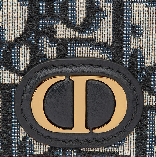 Dior Montaigne Airpods Pro Case