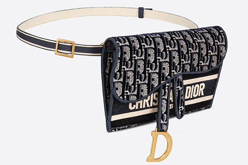 Dior Slim Saddle Pouch thumb