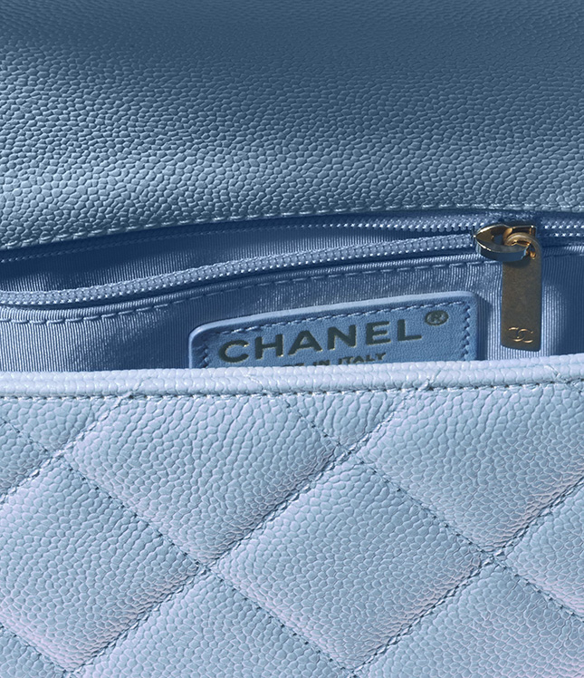 Chanel Mini Flap Bag From The Fall Winter Collection